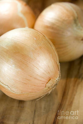 Onion Photograph - Unpeeled Onions by Jorgo Photography - Wall Art Gallery
