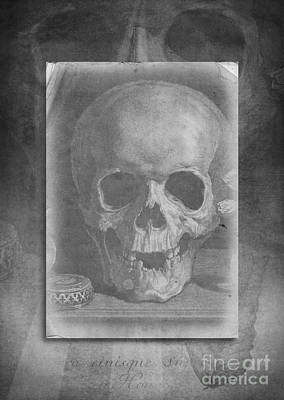 Photograph - Untitled Skull by Edward Fielding