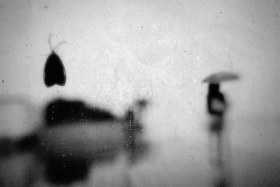 Moth Wall Art - Photograph - Untitled by Teru