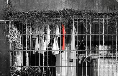 Photograph - Urban Still Life by Yali Shi