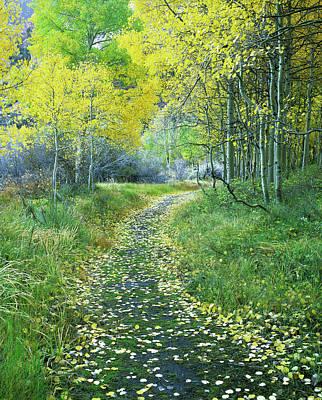 Usa, California, Eastern Sierra Art Print by Jaynes Gallery