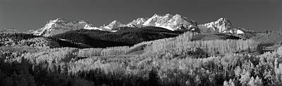 Usa, Colorado, Rocky Mountains, Aspens Art Print by Panoramic Images