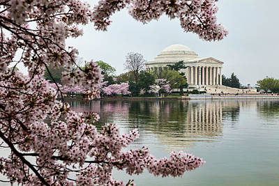 Jefferson Memorial Photograph - Usa, District Of Columbia, Washington by Hollice Looney