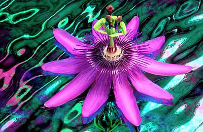 Passion Flower Photograph - Usa, Georgia, Alpharetta by Jaynes Gallery