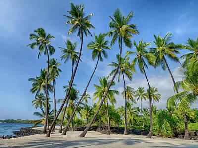 Julie Photograph - Usa, Hawaii, Big Island by Julie Eggers
