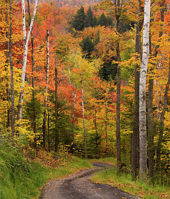 Maine Mountains Photograph - Usa, Maine, Bethel by Jaynes Gallery
