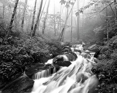 Pisgah Photograph - Usa, North Carolina, Pisgah National by Adam Jones
