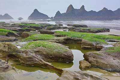 Carter Photograph - Usa, Oregon, Seal Rock State Park by Jaynes Gallery