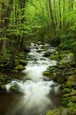 Usa, Tennessee, Stream At Roaring Fork Art Print by Joanne Wells