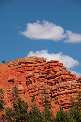 Usa Utah, Red Canyon In Dixie National Art Print by Lee Foster