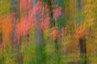 Usa, Virginia, Great Falls Park Print by Jaynes Gallery