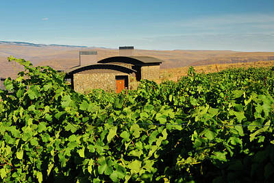 Winery Photograph - Usa, Washington, Columbia Valley by Richard Duval