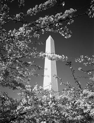 Cherry Blossoms Photograph - Usa, Washington Dc, Monument by Scott T. Smith