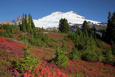 Judy Photograph - Usa, Washington State, Mount Baker by Jamie and Judy Wild