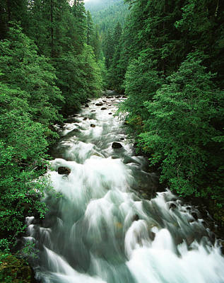 Usa, Washington State, Mount Rainier Art Print