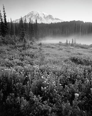 Usa, Washington State, Mt Rainier Art Print by Stuart Westmorland