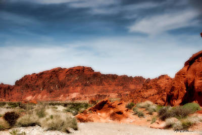 Photograph - Valley Of Fire by Marti Green