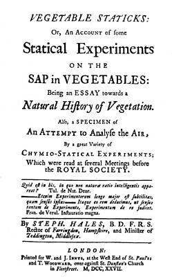 Vegetable Staticks, 1727 Print by Granger