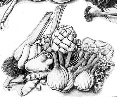 Artichoke Drawing - Vegetables by Arthur Glendinning