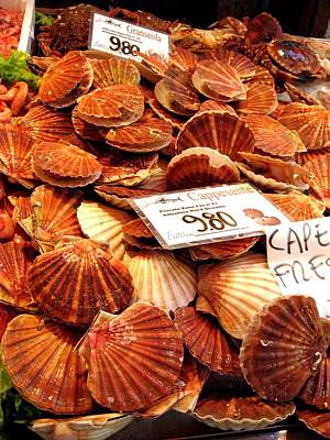Photograph - Venice Fish Market by Lisa Boyd