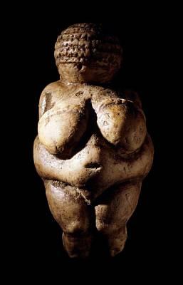 Stone Figurine Photograph - Venus Of Willendorf, Stone Age Figurine by Science Photo Library