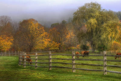 Vermont Farm In Autumn Art Print by Joann Vitali