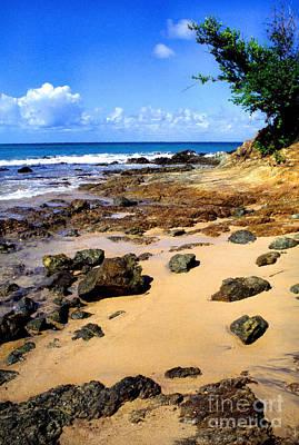 Vieques Photograph - Vieques Beach by Thomas R Fletcher