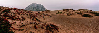 Luis Photograph - View Of Sand Dunes And The Morro Rock by Panoramic Images