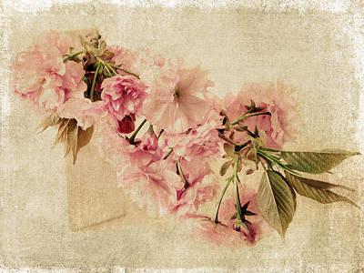 Cherry Blossoms Digital Art - Vintage Blossom by Jessica Jenney