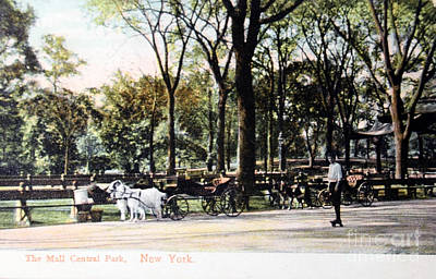 Photograph - Vintage Postcard Of People In Central Park In 1905 by Patricia Hofmeester
