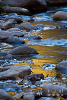 Photograph - Virgin River Reflections by Fred Stearns