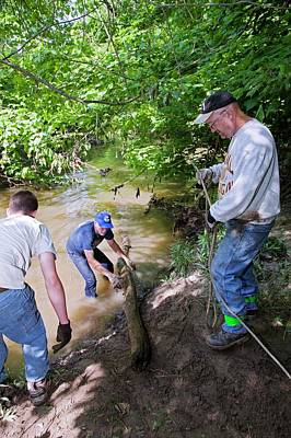 Nature Conservation Photograph - Volunteers Clearing Log Jam by Jim West
