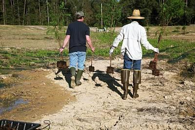 Volunteers Planting Trees Art Print by Jim West