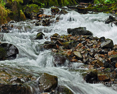 Photograph - Wahkeena Falls Runoff by Chuck Flewelling
