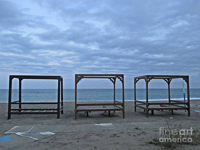Photograph - Waiting For The Spring In Torremolinos by Chani Demuijlder