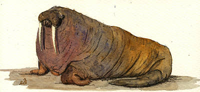 Elephant Seals Painting - Walrus by Juan  Bosco