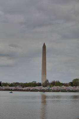 Flower Photograph - Washington Monument - Cherry Blossoms - Washington Dc - 011312 by DC Photographer