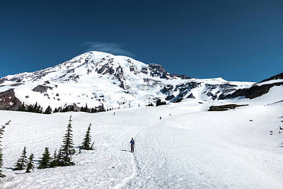 Washington, Mount Rainier Art Print by Matt Freedman