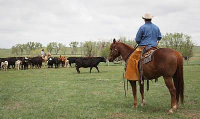 Photograph - Watching Herd by Diane Bohna