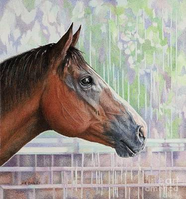 Drawing - Watching The Rain by Helen Bailey