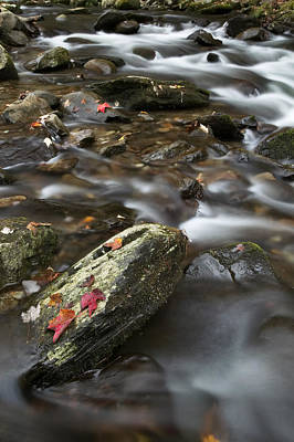 Photograph - Water And Rocks by Byron Jorjorian