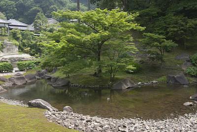 Photograph - Water Garden by Masami Iida