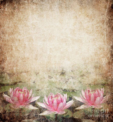 Florals Mixed Media - Water Lily by Jelena Jovanovic