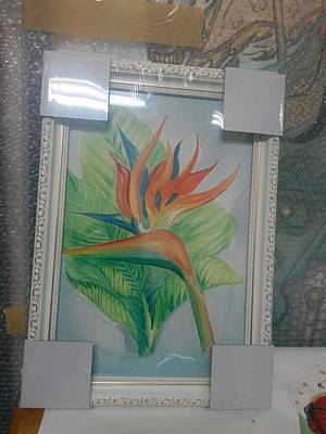 Watercolor Art Print