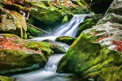 Waterfall Great Smoky Mountains Painted Art Print by Rich Franco