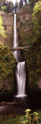 Waterfall In A Forest, Multnomah Falls Art Print by Panoramic Images
