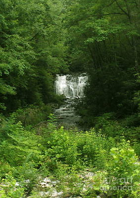Photograph - Waterfall by Sherri Williams