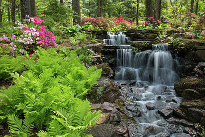 Indiana Photograph - Waterfall With Ferns And Azaleas by Panoramic Images