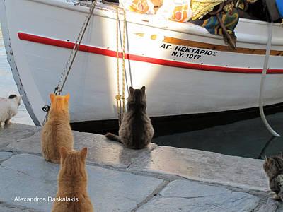 Hydra Island Photograph - Waiting The Fish by Alexandros Daskalakis