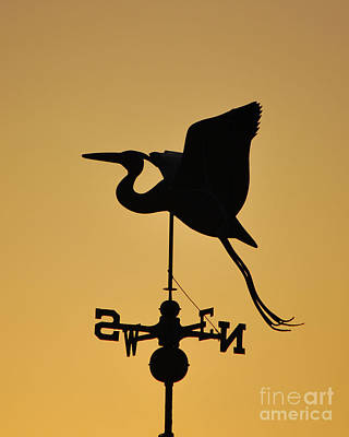 Photograph - Weather Vane Silhouette  by Bob Sample